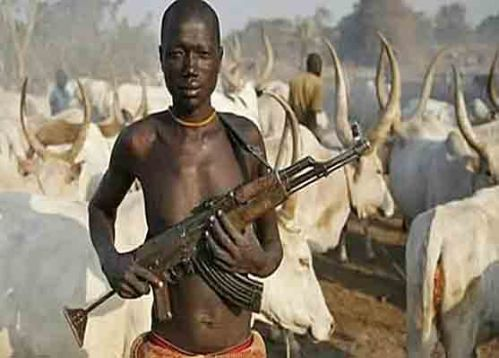Muslim Fulani herdsmen have become heavily armed in recent years. (File photo)